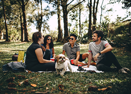 group of people at a picnic in a park with a dog.