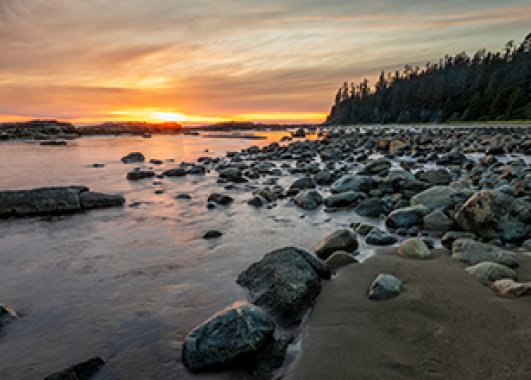 sunset on the rocky coast of Maine.