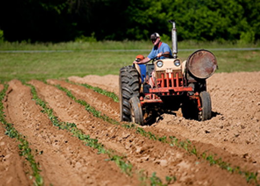man riding on a tractor, plowing a field.