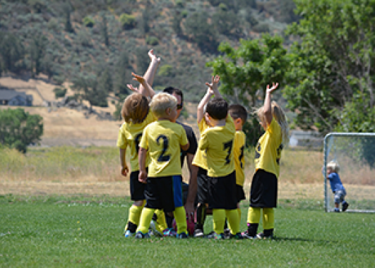 A soccer team of children in yellow and black uniforms celebrating