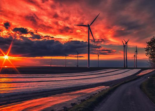 Windmills along the landscape with setting sun